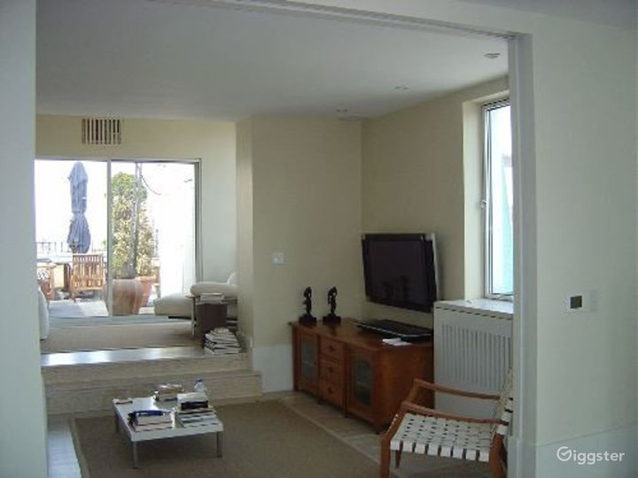 Upscale penthouse with roof terrace: Location 3115 Photo 2