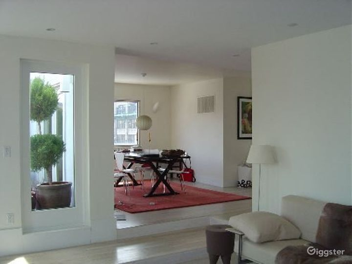 Upscale penthouse with roof terrace: Location 3115 Photo 5