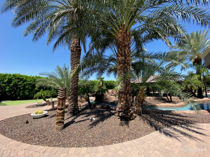 Tropical Desert Private Oasis w/ Beach  Photo 3