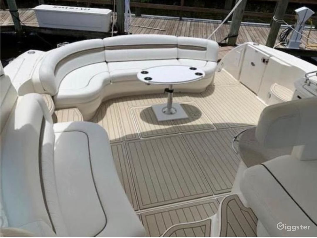 Majestic 54FT SEA RAY Yordany Party Yacht Space Events  Photo 1