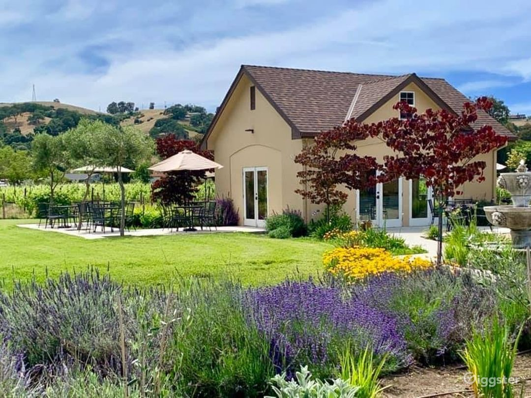 One of a kind Vineyards and Winery in San Martin Photo 1