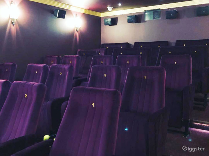 Opulent Cinema in London Photo 4
