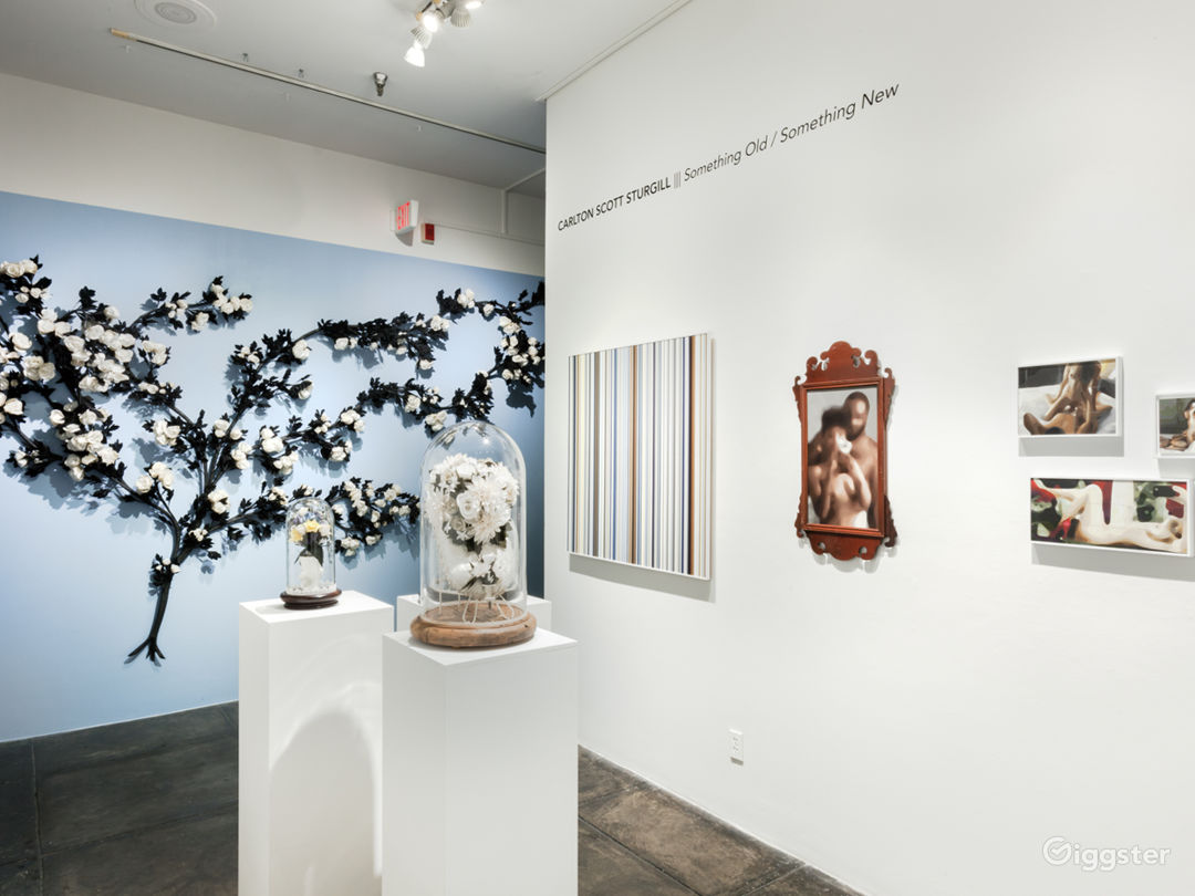 """Installation shot from Carlton Scott Sturgill """"Something Old/Something New"""" Exhibition. MIDDLE GALLERY."""