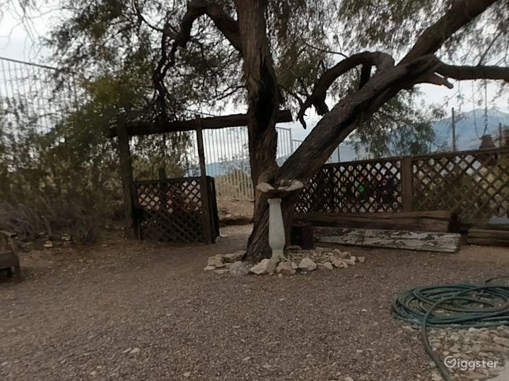 Quiet and Relaxing Garden in California Photo 2