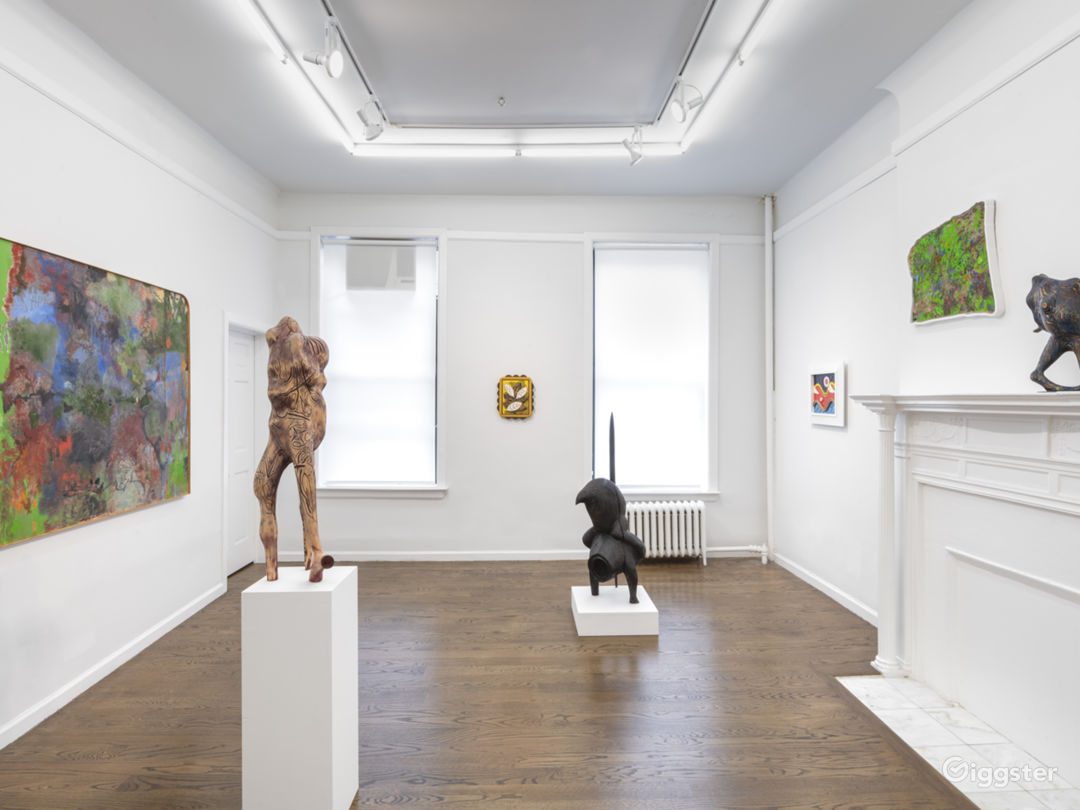 Upper East Side Contemporary Gallery Space Photo 3