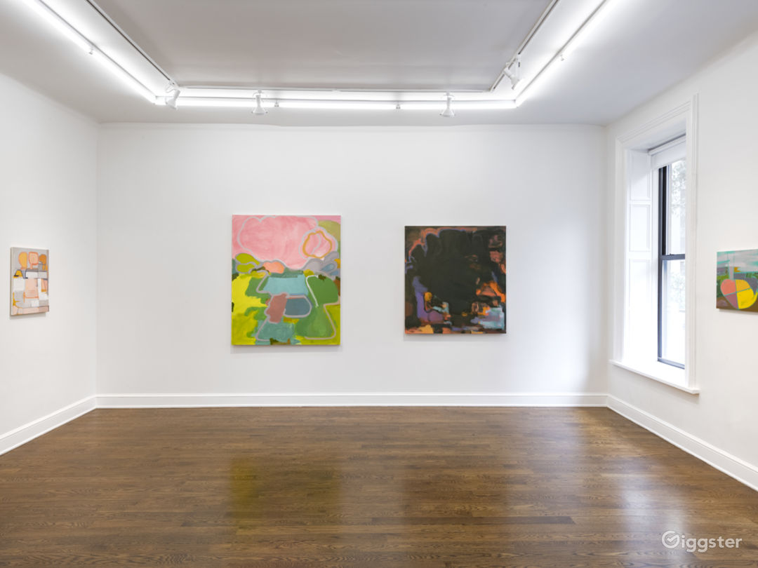 Upper East Side Contemporary Gallery Space Photo 2