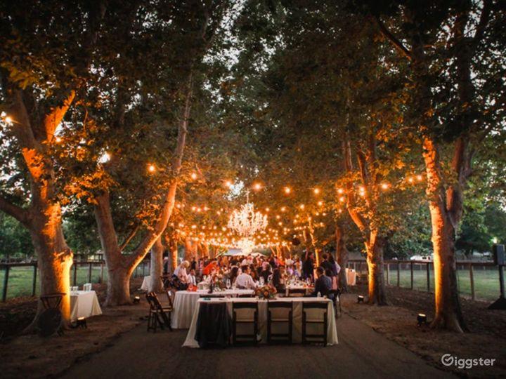 Whispering Rose Ranch in California Photo 5