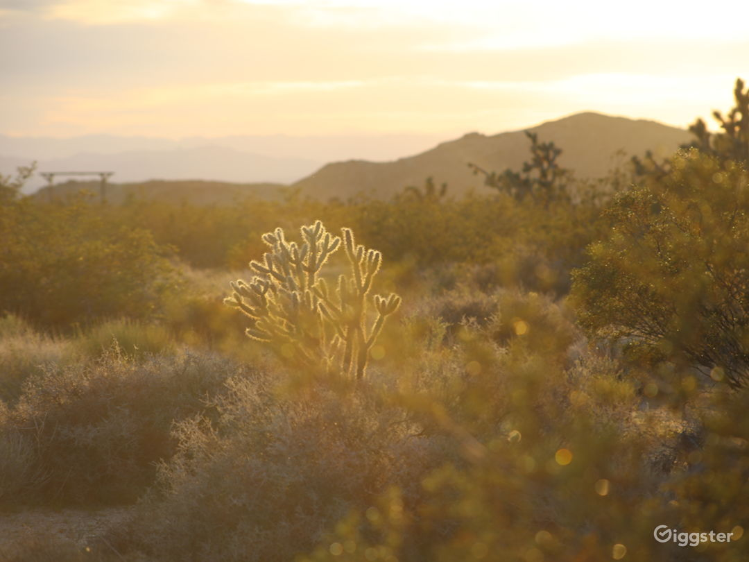 40 acres of high desert land with mountain views.