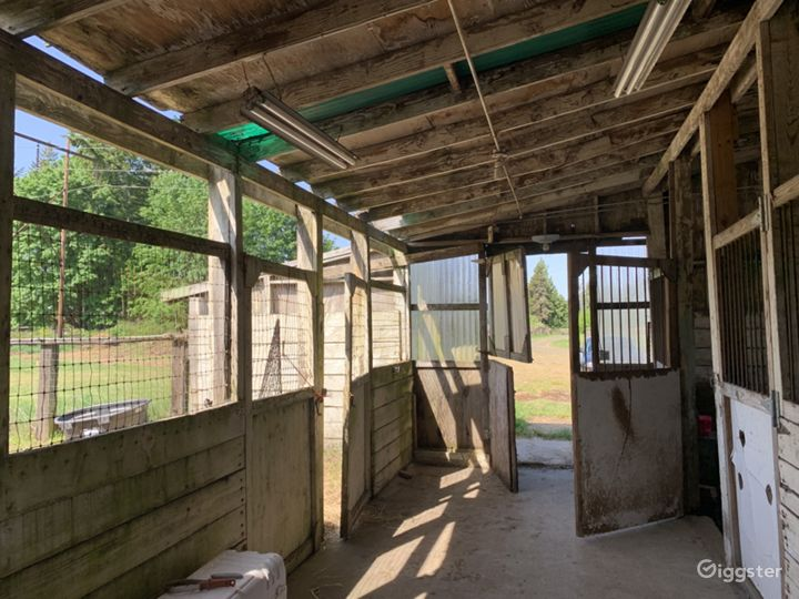 Historic 27 Stall Stables and Huge Indoor arena Photo 5