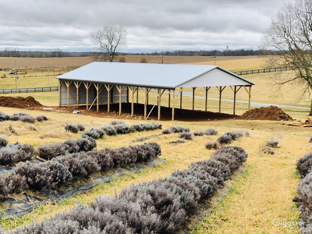 Winter view of open air pole barn structure and some of the dormant lavender field.