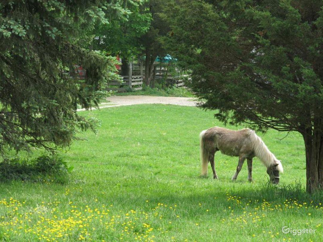 Rural farm: Location 5123 Photo 1