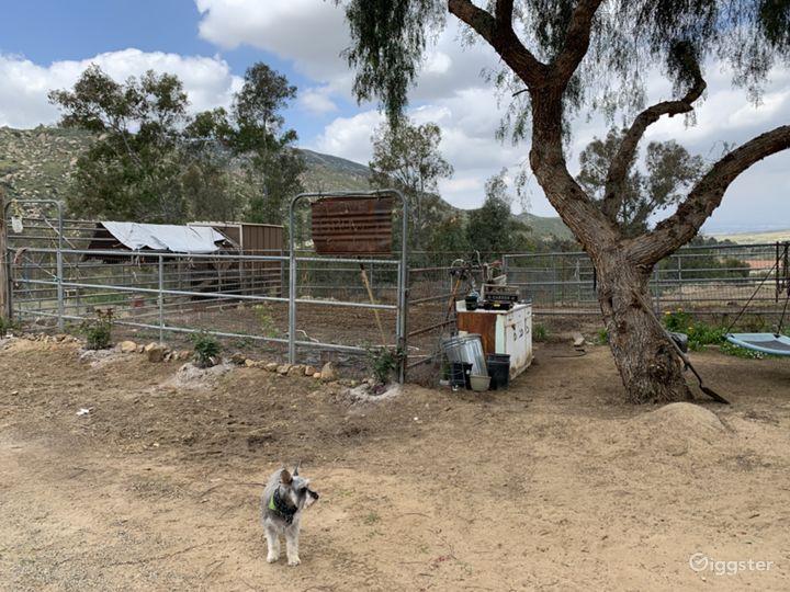 Garden and chicken coop.