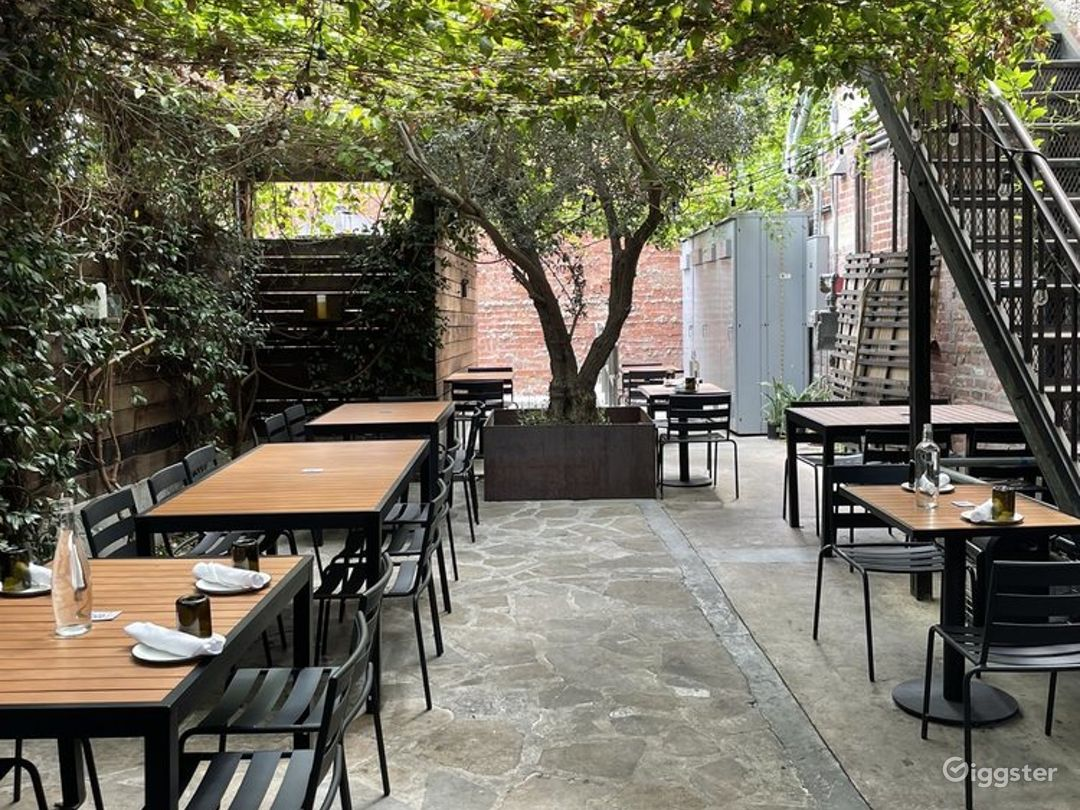 Back Patio Covered with Vines in LA - Outdoor Patio Photo 1
