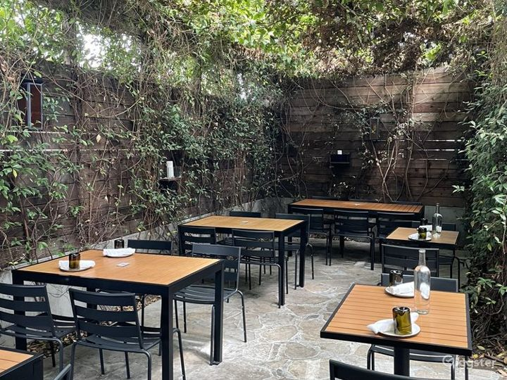 Back Patio Covered with Vines in LA - Outdoor Patio Photo 5