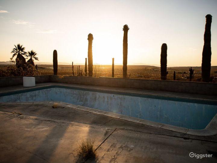 The Saguaro Cactus Farm near Joshua Tree Photo 2