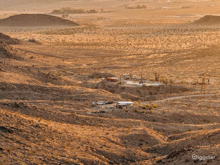 The Saguaro Cactus Farm near Joshua Tree Photo 4