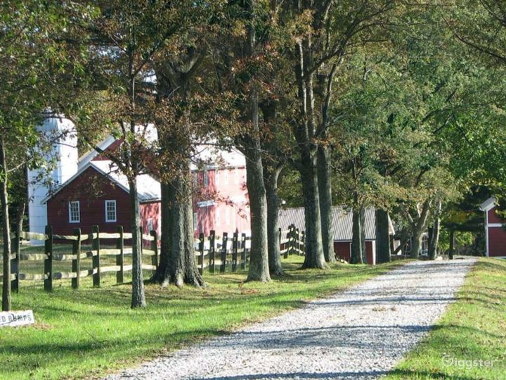 Working farm with outbuildings: Location 620 Photo 4