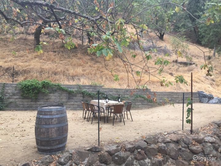 Spacious Outdoor Patio and Venue for Events Photo 5