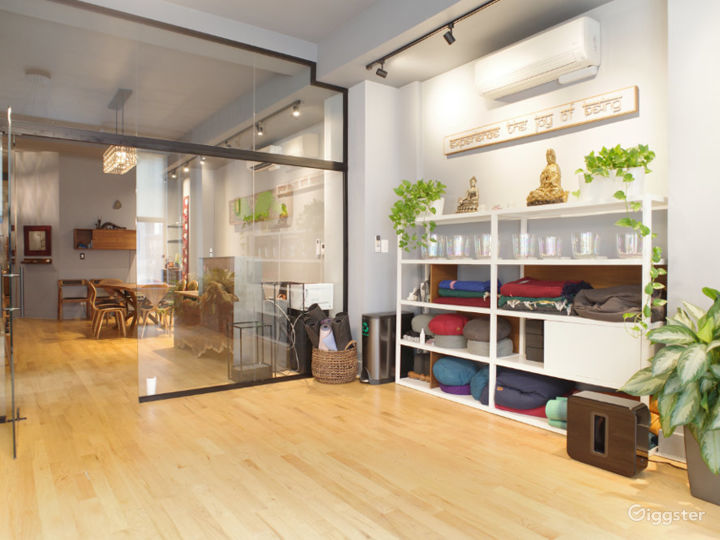 Midtown NYC Luxury Space with Natural Light Photo 4