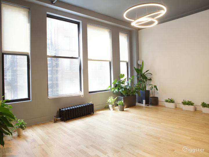 Midtown NYC Luxury Space with Natural Light Photo 3
