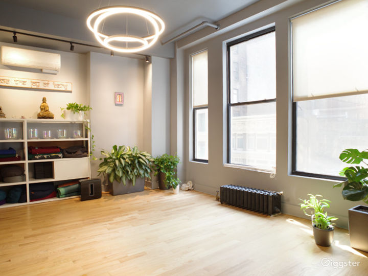 Midtown NYC Luxury Space with Natural Light Photo 2
