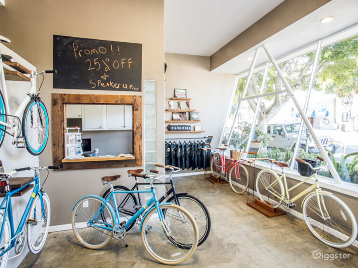 Local Venice Bicycle Shop Photo 5