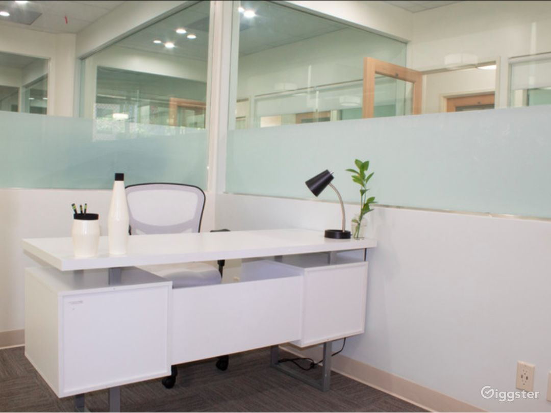 Five-Star Private Office in Los Angeles Photo 1