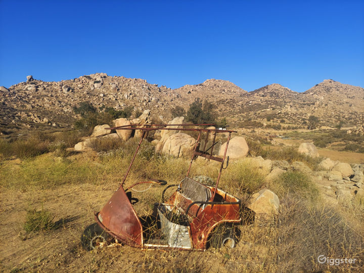 Abandoned cars, trucks, trailers, shipping containers