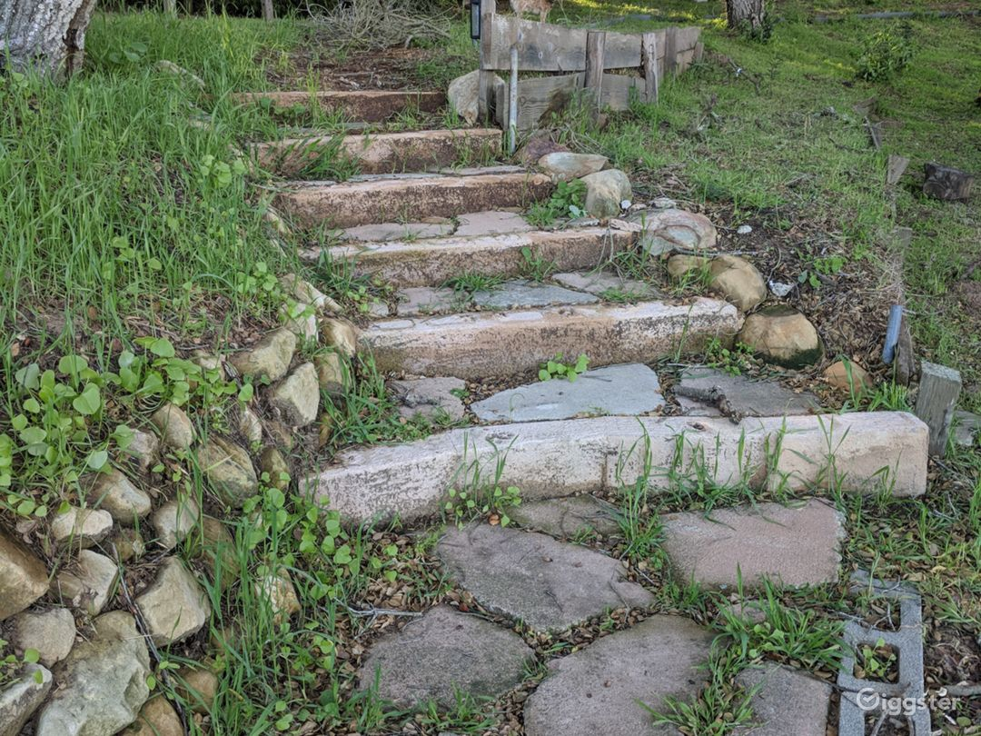 hand placed steps to an oak forest