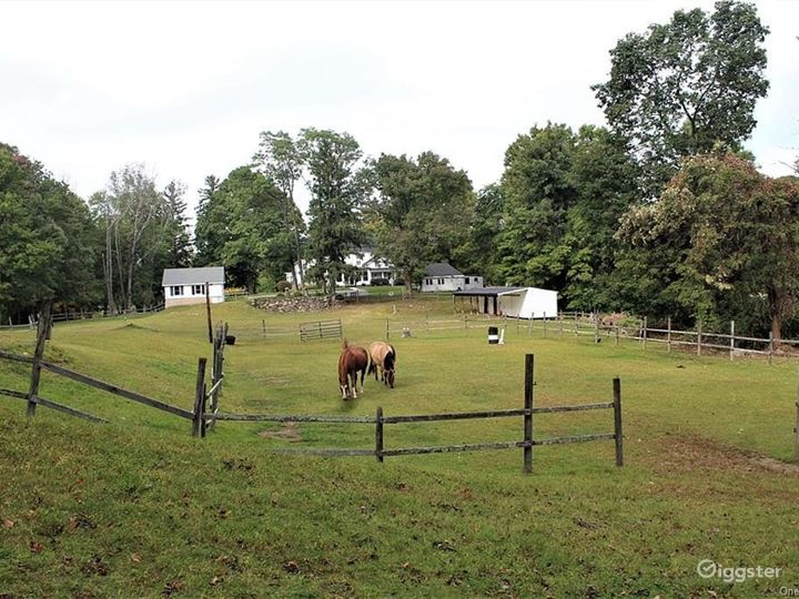 1777 historical home & meadows  Photo 5