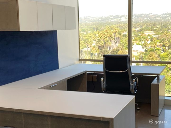 Day Office in Beverly Hills Photo 5