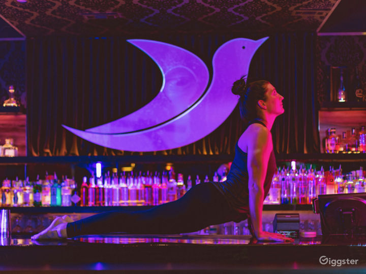 Attractive back bar with projection mapped logo