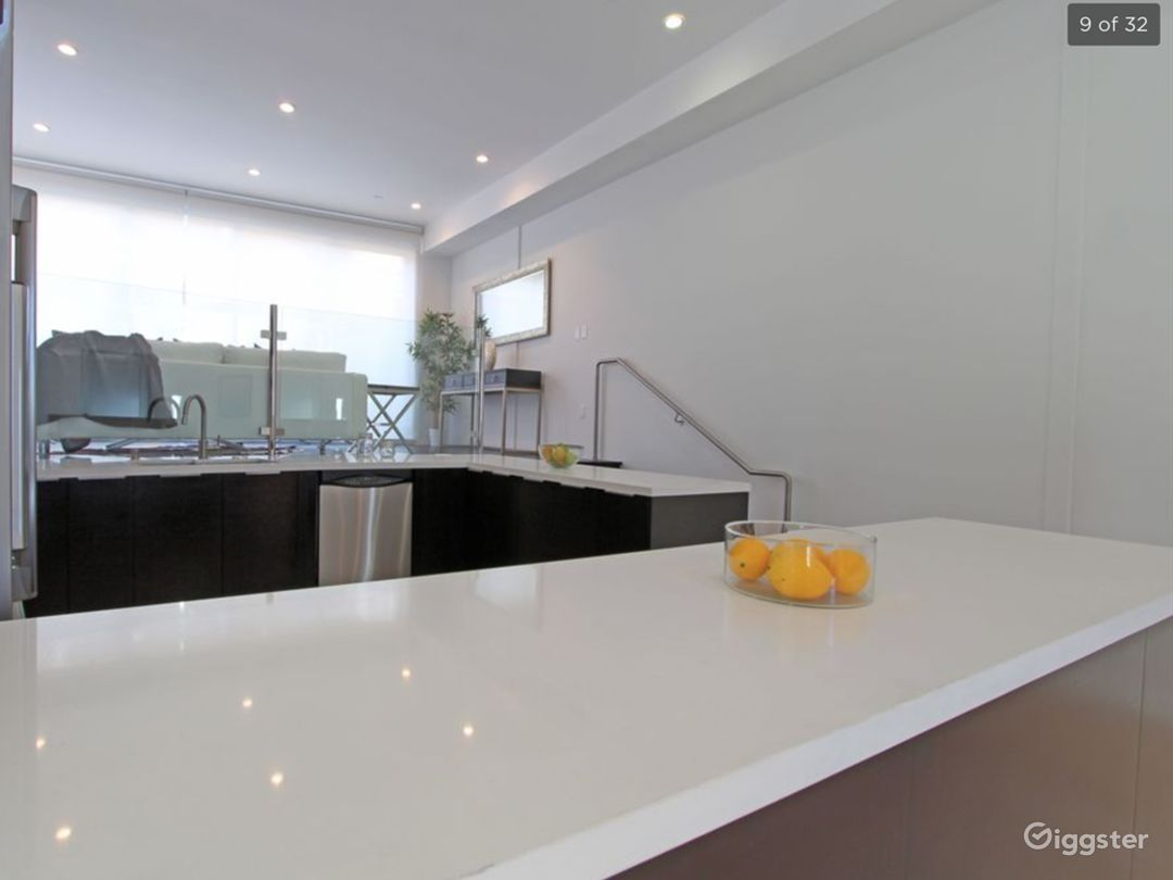 Modern Kitchen & Private Rooftop Penthouse Suite Photo 1