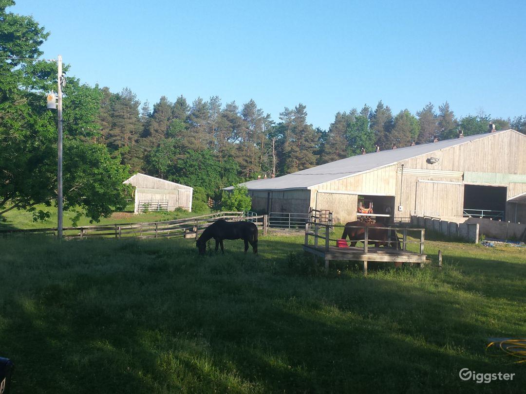 Welcoming rustic horse farm