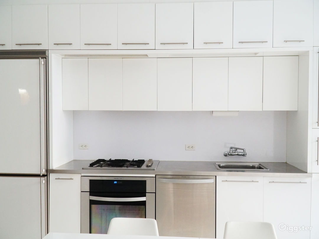 Open Kitchen, Super modern white lacquer Kitchen With stainless countertop & swing out faucet