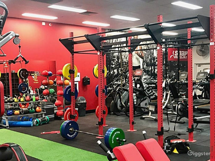 Fully Equipped Indoor Gym for Health Enthusiasts Photo 2