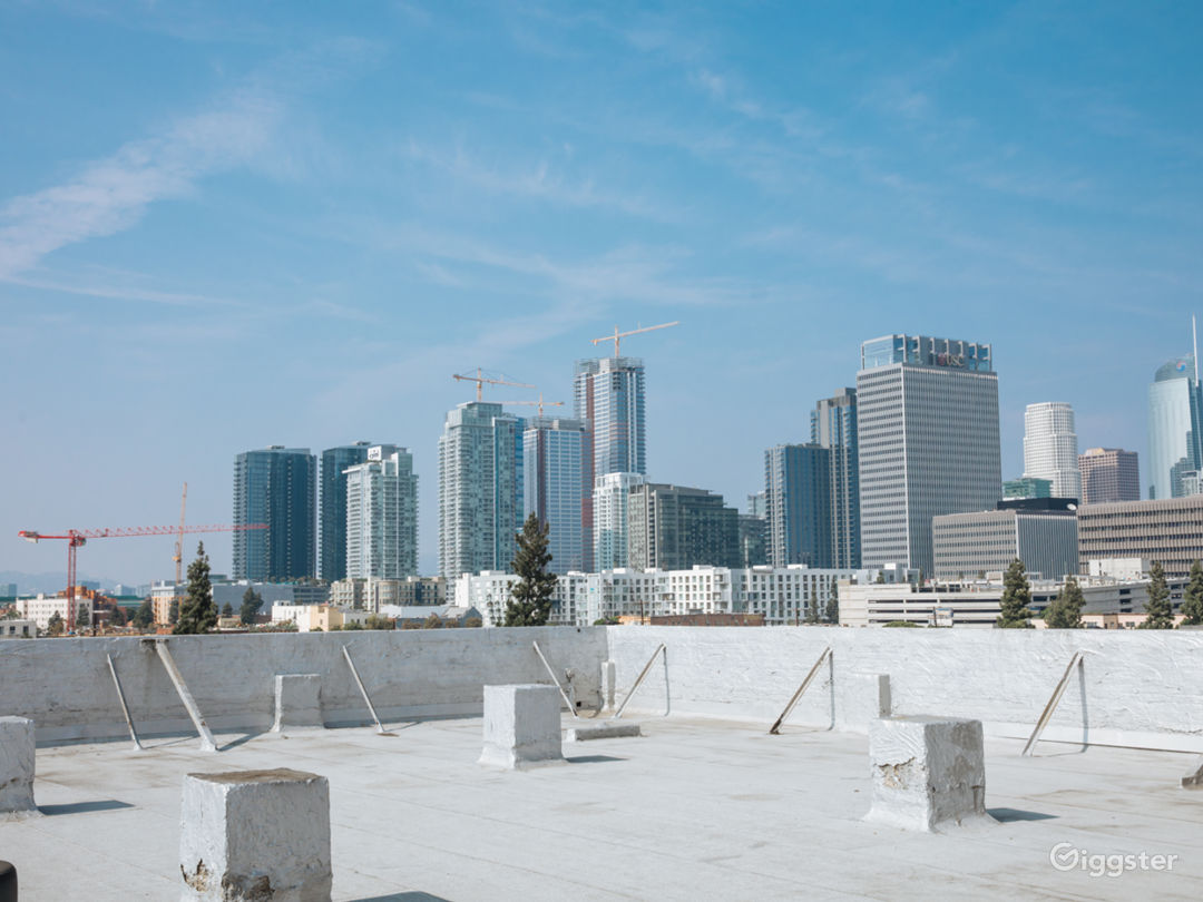 The Urban Rooftop Photo 5
