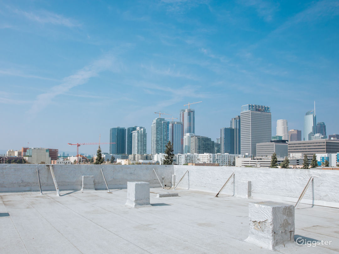 The Urban Rooftop Photo 1