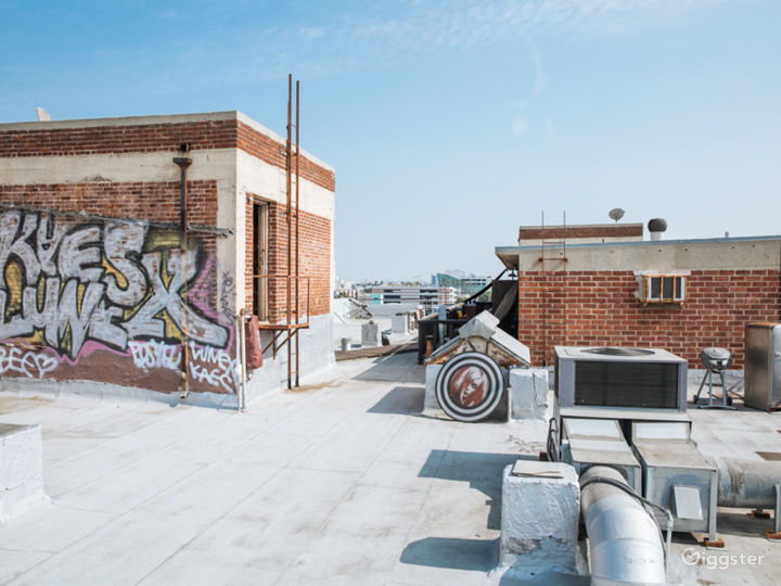 The Urban Rooftop Photo 3
