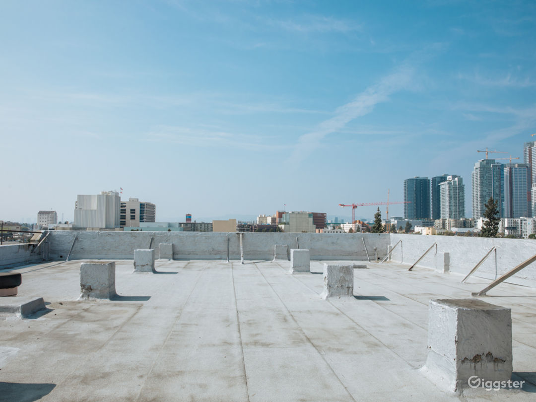 The Urban Rooftop Photo 2
