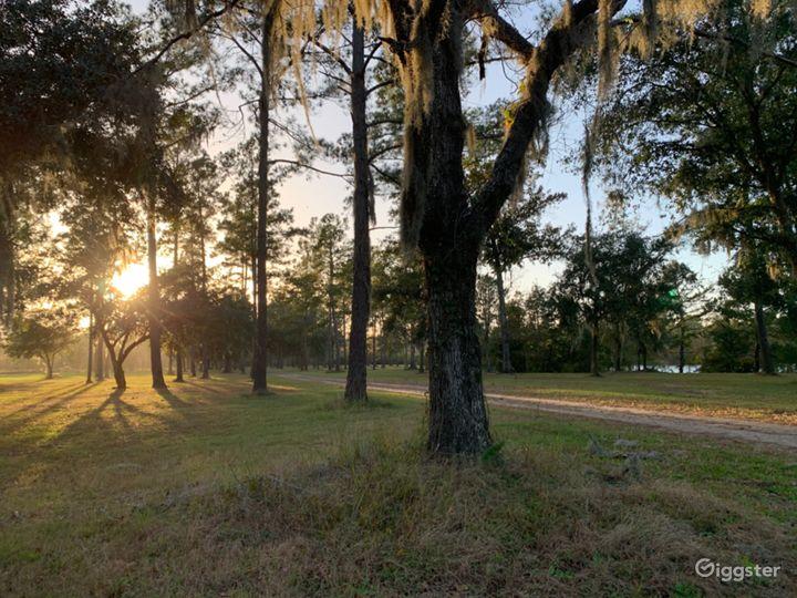 The Woodlands Nature Reserve- Charleston SC