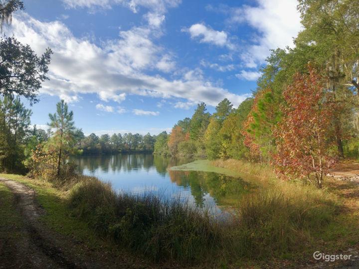 Palmetto Lake