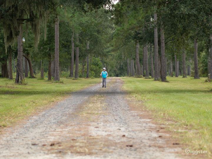 The Woodlands Nature Reserve- Charleston SC Photo 5