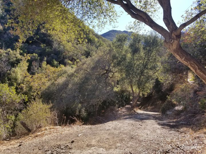 Oak tree forest, boulder creek, mountains, cabins Photo 3