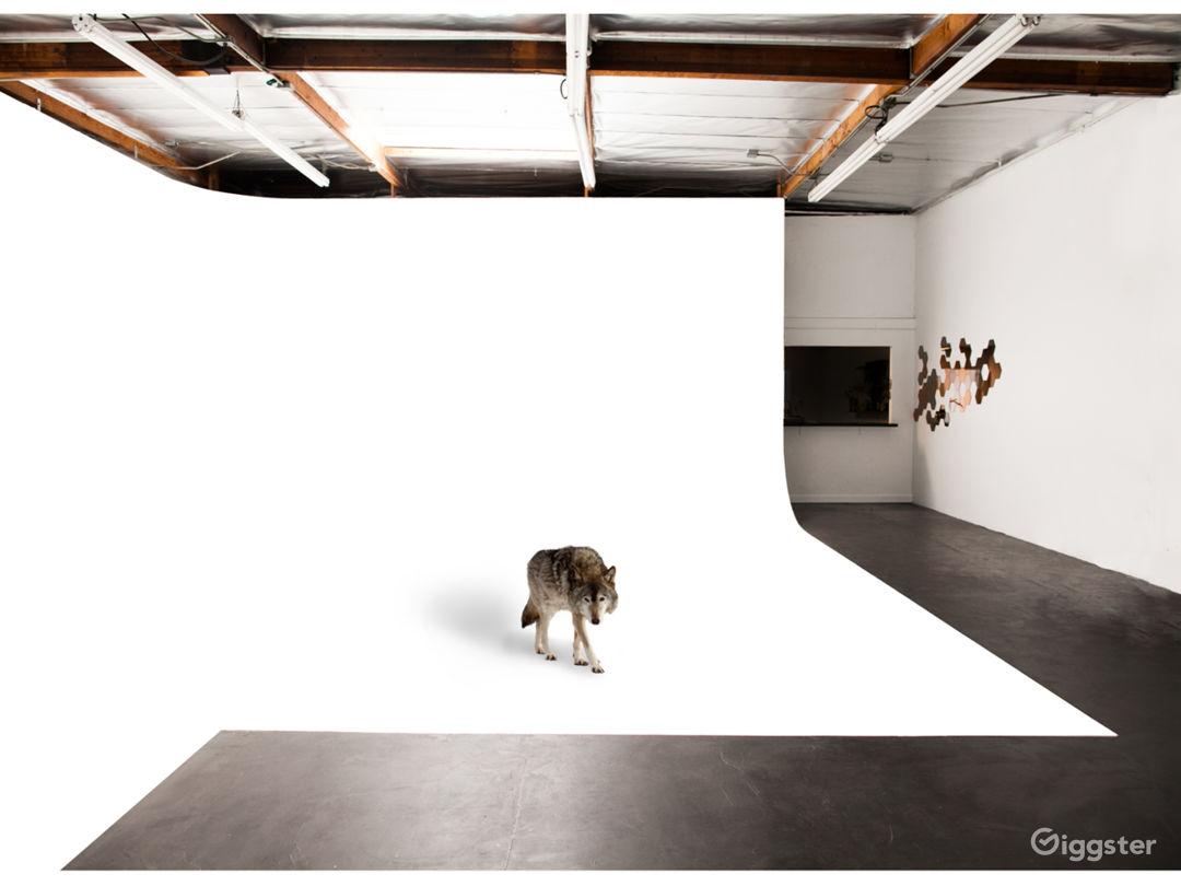 Boutique Photo Studio Photo 4