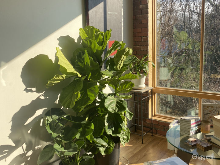 Upper sitting area, filled with plants and books