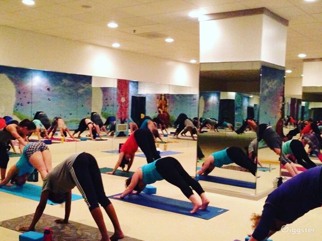 Large wellness center and yoga studio for events! Photo 1