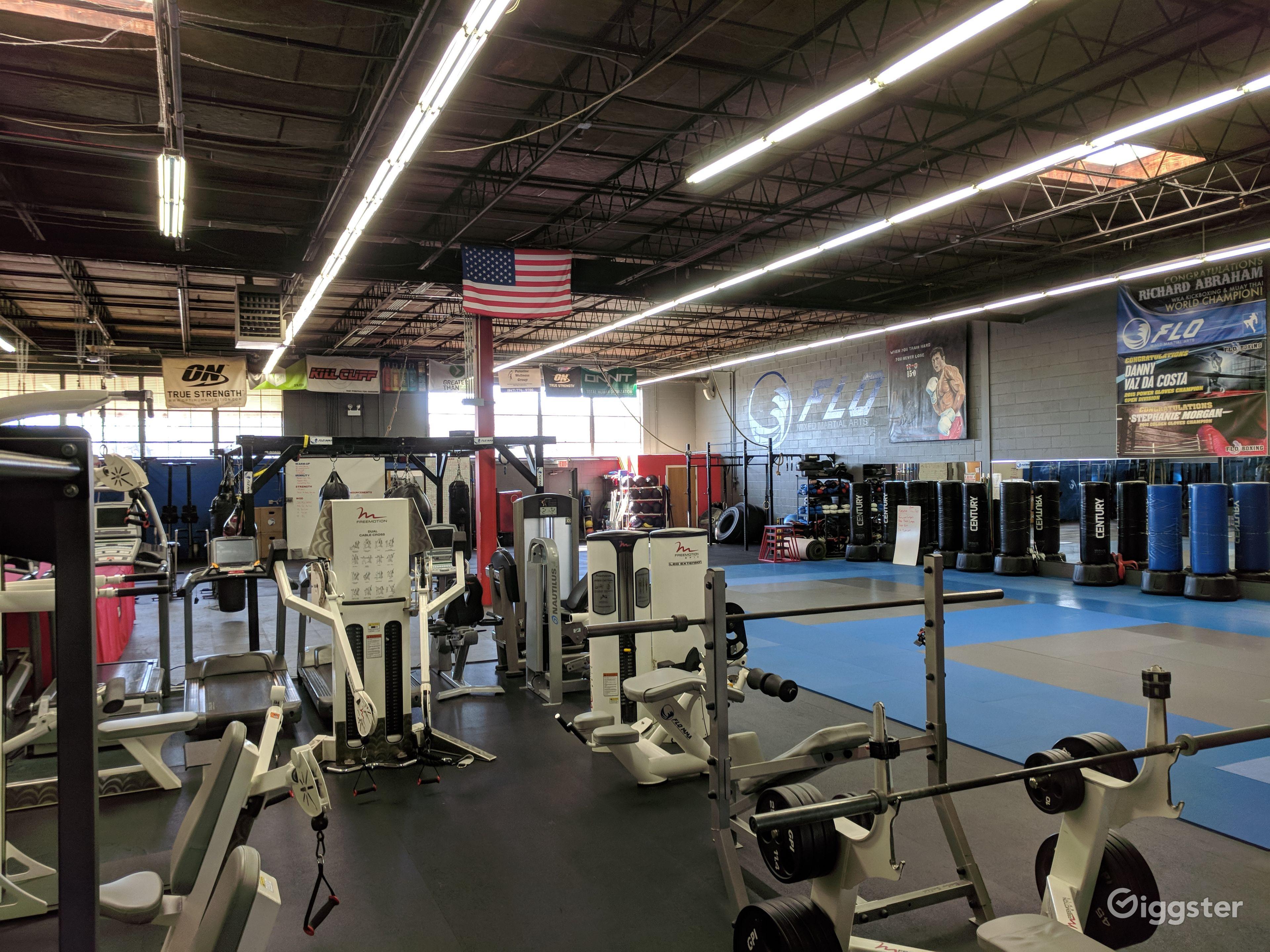 Modern Gym in Palantine Chicago Rental