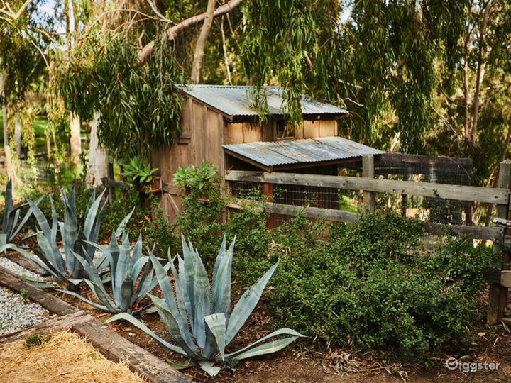 The Barn in Topanga with Outdoor Deck Photo 5
