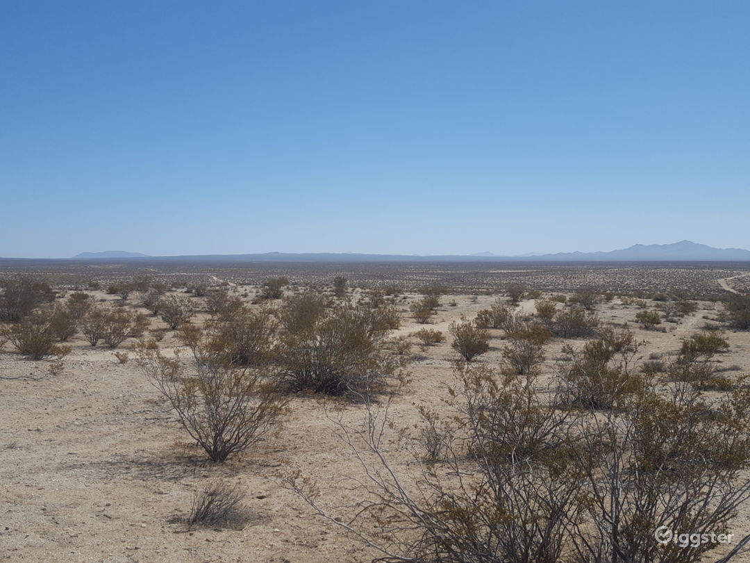 Desert - Open - Mojave - Poperty with Road access. Photo 1